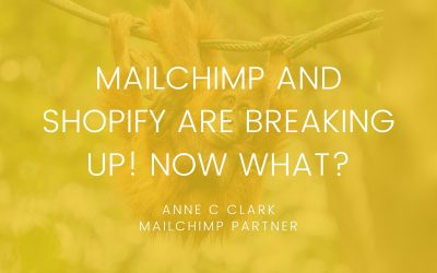Mailchimp and Shopify are breaking up! Now what?